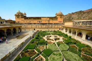 Jaipur Sightseeing by Day and Night with Dinner with Indian Family (Private)