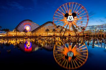 Private Tours at Disneyland and California Adventure