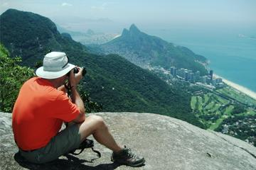Tijuca Forest Half-Day Hike