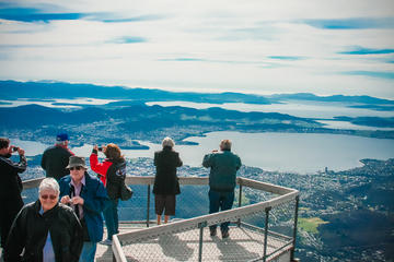 Highlights of Hobart Tour including Bonorong Wildlife Sanctuary and Mt Wellington