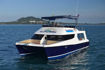 Koh Tao Dive Tour Including 2 Dives...