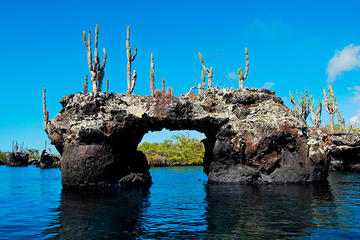 6-Day Galapagos Land Tour: Los Tuneles Program