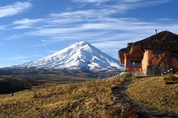 Cotopaxi National Reserve Hiking Day Trip