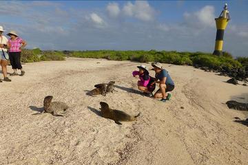 Espanola Galapagos Day Trip from San Cristobal Island