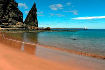 Excursión de 8 días por las islas...