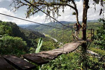 Excursión de un día al bosque nuboso de Mindo desde Quito