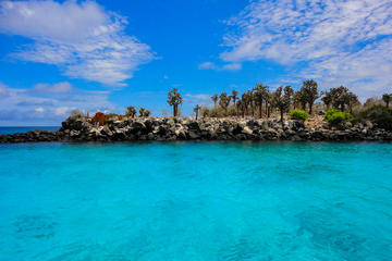 Santa Fe Galapagos Snorkeling Day Trip plus Playa Escondida - Includes Lunch