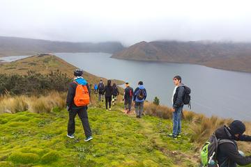 Viagem particular de um dia até a Reserva Ecológica Antisana