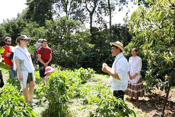 Full-Day Private Colombian Coffee Tour Filandia and Salento from Armenia
