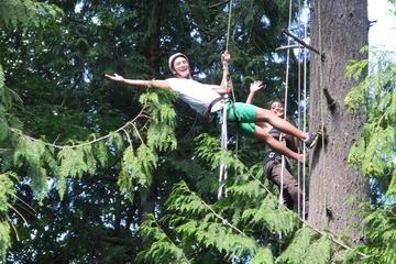 Canopy Tree Climbing on Bainbridge Island