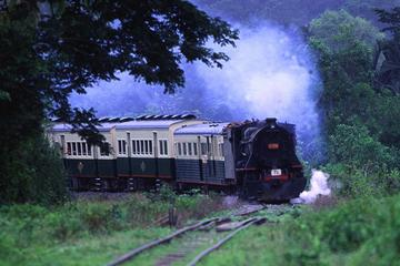Half-Day North Borneo Railway Train ...
