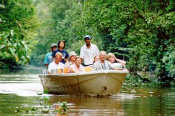 Klias Wetlands' River Safari