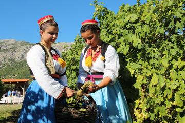 Konavle half day countryside tour