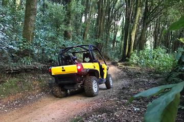 4x4 Self Drive 2 seater CanAm Commander
