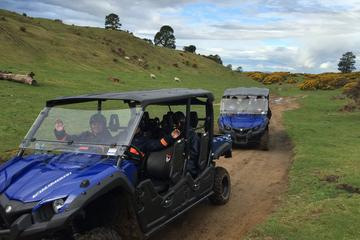 Off-Road 4WD Buggy Adventure from