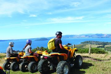 Quad Biking Adventure from Rotorua
