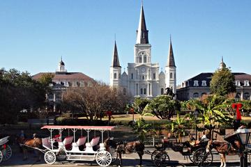 Private French Quarter Walking and...