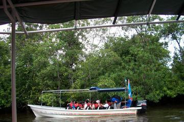 Half-Day Tour Klias Wetland Cruise...