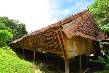 Rungus Longhouse and Tip of Borneo