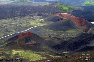 Gita mattutina sull'Etna