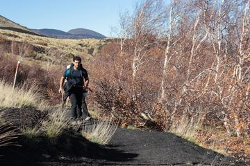 Etna Trekking Half-Day Tour