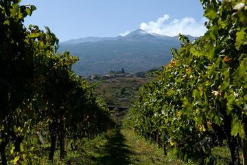 L'Etna et circuit des vins au départ...