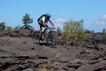 Mount Etna Mountain BikeTour