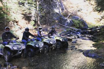 2-Hour Sierra ATV Tour