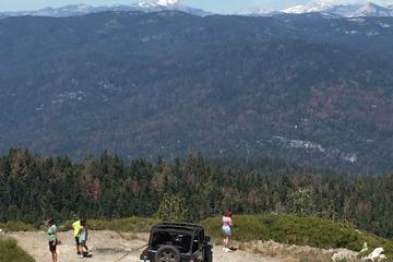 Devils Peak Lookout 4x4 Jeep Tour