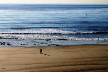 Private Coastal Tour of San Diego
