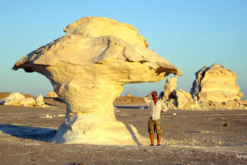 Bahariya Oasis Tour and Desert Safari from Cairo - 3 Days