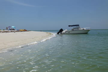 Private Island Beach Tour in Palm Harbor