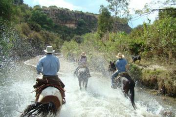 Medio día de equitación