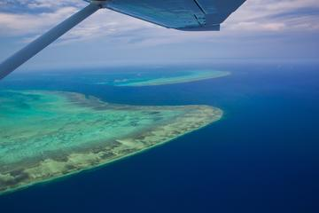 60-Minute Great Barrier Reef and Port ...