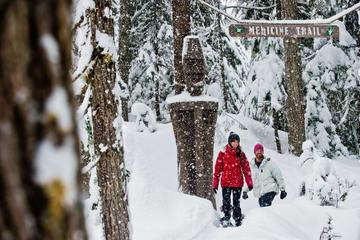 Whistler Snowshoe Adventure