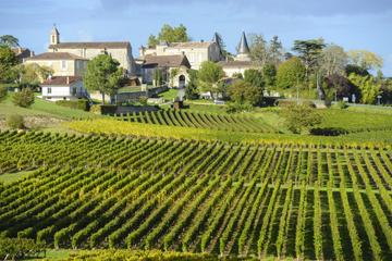 Excursão terrestre em Bordeaux: Viagem particular de meio dia em St...