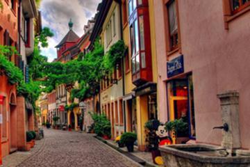 Freiburg Half Day Tour from Colmar