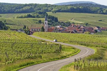 Rota do vinho em Alsácia: Excursão de meio dia com Degustação saindo...