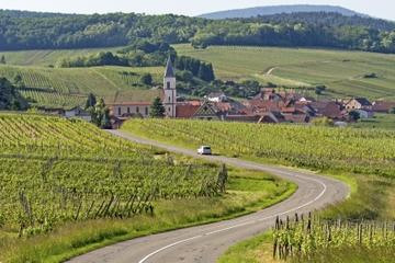 Route des vins d'Alsace: visite-dégustation d'une demi-journée au...
