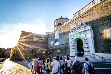 Ticket zonder wachtrij voor Vaticaanse Musea met Meet and Greet