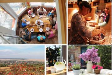 Day with A Local: Private Full-Day Cultural Family Experience including 4-Course Dinner