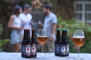 Cordoba Craft Beer Tasting and City...