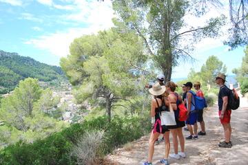 Mallorca Full Day Tramontana Hike and...