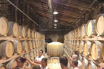 Mallorca Wine Tasting Experience for...