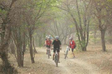 Jaipur Wildlife Pedal Tour