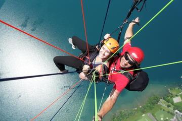 Niederhorn Paragliding Experience in Interlaken