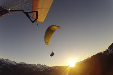 Summer Paragliding Beatenberg in Interlaken