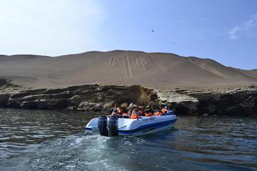 Reserva Nacional de Paracas e Islas Ballestas con todo incluido desde...