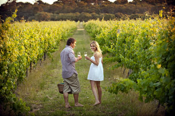 Circuit des vins privé romantique...
