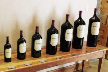 Excursão privada para amantes de vinho tinto, partindo da Cidade do...